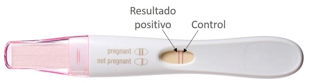 Interpretar resultados test embarazo
