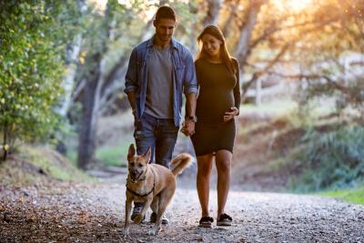 Bebés y perros - cambiando rutinas