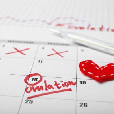 Calculadora de ovulación y días fértiles